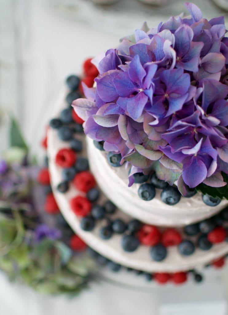 Schoko-Apfelmus Torte mit Blaubeercurd und Mascarpone