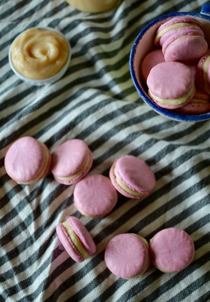 Rhabarber Macarons